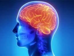 Diqqət: Yuxusuzluq beyni 5 il qocaldır
