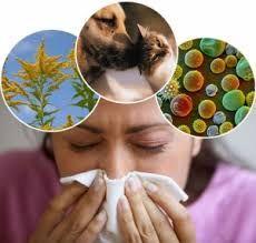 Allergiya və onun yaranma səbəbləri...