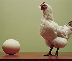 """""""Что появилось раньше яйцо или курица?"""""""