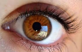 Gözün buynuz qişasının idxalı və transplantasiyasına icazə verilib