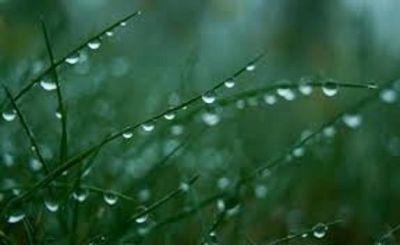 Ожидаются дожди и грозы - Предупреждение