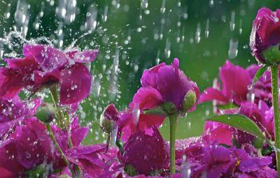 Bəzi rayonlarında yağış yağacaq, dolu düşəcək